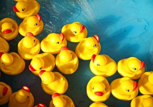 My blogging brings all the ducks to the yard